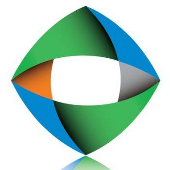bizmod logo only